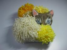 "SOLD! Pom Pom Cat - 6"" x 6"", yarn and fabric on canvas, 2011"
